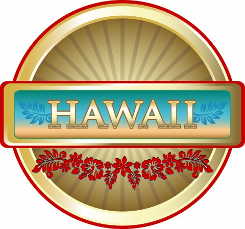 Hawaii Timeshares For Sale