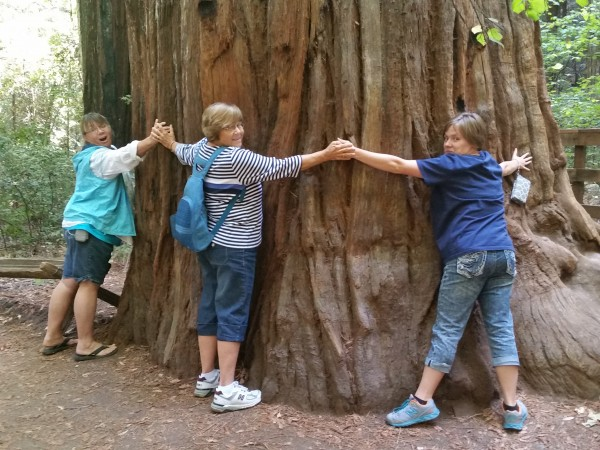 Armstrong Redwoods State Natural Reserve Family Around a Tree